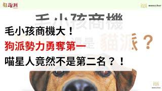 【趨勢狂爆】毛小孩商機大!狗派勢力勇奪第一,喵星人竟然不是第二名?!(影音)