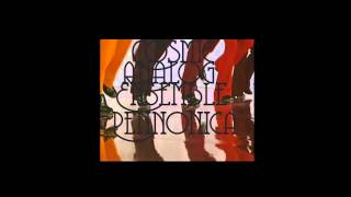 Cosmic Analog Ensemble  -  Stuzzicadenti