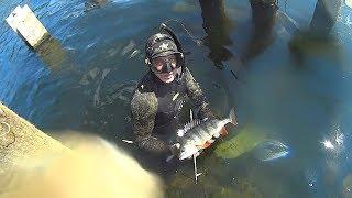 Рыбалка в марте на реке сейм
