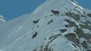 Dagestan tur hunting  Azerbaijan.mpg