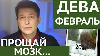Дева февраль 2020 прощай мозг гороскоп . гороскоп Дева на февраль 2020 Павел Чудинов