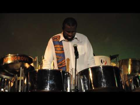 0 Akinola Sennon | Steel Pan, Afro Jazz