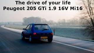 The Drive Of Your Life - Peugeot 205 GTi 1.9 16V Mi16