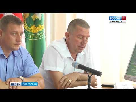 О проведении в Волгоградской области совещания по вопросам работы в системе «Меркурий»