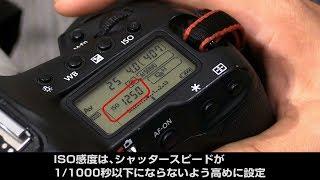 キヤノン EOS-1D X Mark II&EF200-400mm F4L IS USM エクステンダー1.4× 報道カメラマンのこだわり設定
