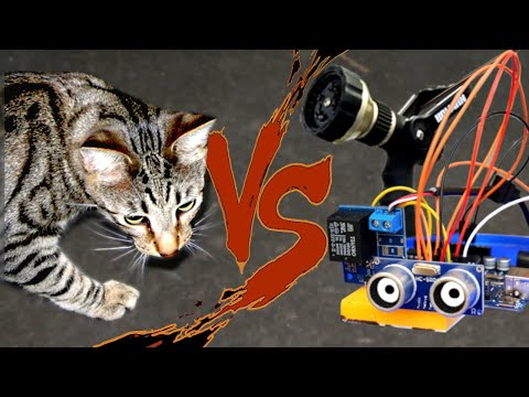Guy Makes A Robot That Stops Cats From Killing Animals In His Yard