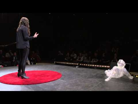 Mind, Body & Soul: Mental Wellness Centers   Jamie Mangiameli   TEDxNorthCentralCollege