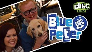 Blue Peter Puppy On Chris Evans BBC Radio 2 Show