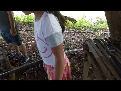 Kung paano mapupuksa ang worm sa pamamagitan ng Alexander Myasnikov