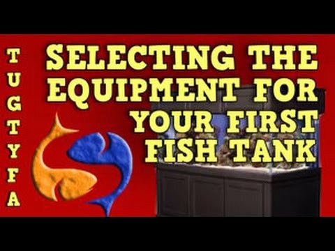 Selecting The Equipment For Your First Fish Tank, The Ultimate Guide To Your First Aquarium Ep 3
