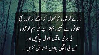 best collection of urdu quotes pyari baatein achi batain