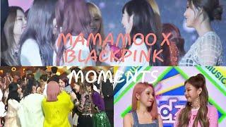 MAMAMOO (마마무) x Girlgroups Edition: BLACKPINK (블랙핑크)