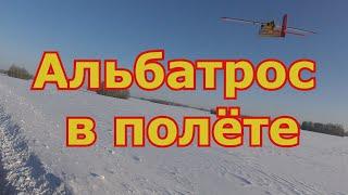 Альбатрос в полёте с FPV смотрим с земли и с полёта