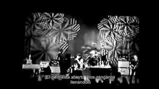 Chris Cornell - Steel Rain   subtitulada