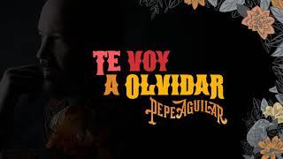 11. Pepe Aguilar   Te Voy A Olvidar (Audio Oficial)
