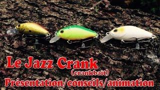 Leurre Pour La Pêche De La Perche #1 : Le Jazz Crank (crankbait) Animation/ Technique - GOpro HD