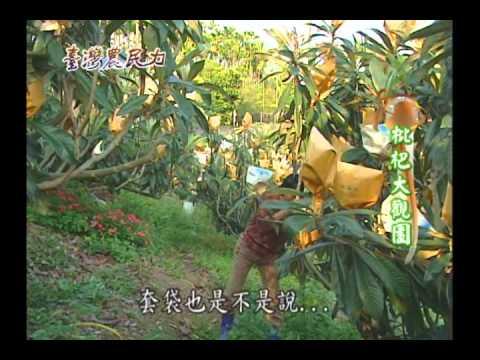 臺灣農民力第24集