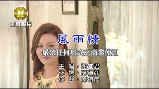 謝宜君-風雨情【KTV導唱字幕】1080p