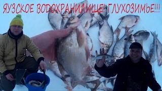 Отчет о зимней рыбалке с яузского водохранилища