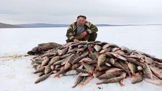 Сомалийская рыбалка огонек 2020