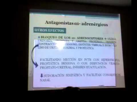 Encuesta para los pacientes hipertensos