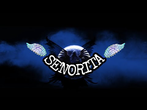 SENORITA REMIX DJ SLOW BREAKBEAT 2019 LAGU TERBARU