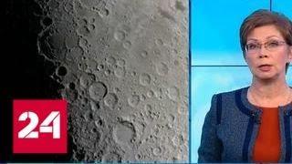 Ожидаемый исход: росток хлопка не смог пережить ночь на Луне - Россия 24