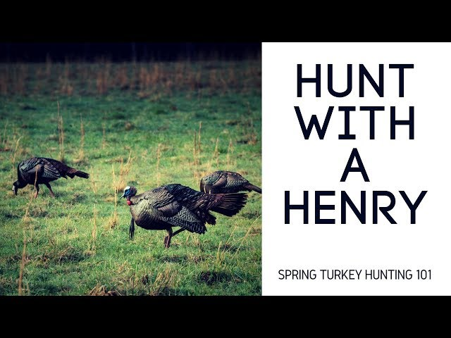Spring Turkey Hunting 101