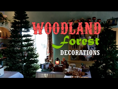 Party Decoration Ideas | Woodland & Forest Themed Adventure Decor