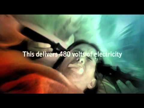 Electroshock — Its Torture
