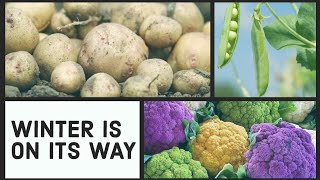 Winter Gardening UK | What to Plant in Winter for Best Results  | Shokher Bagan 2020