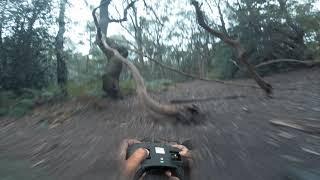 STICK CAM - Man Made Tree Gaps ???????????? | FPV FREESTYLE UK