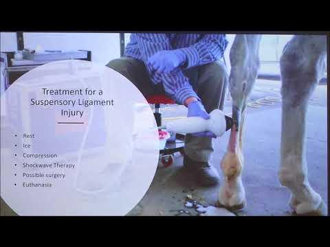 Eruzione cutanea sul retro di un trattamento prurito adulta