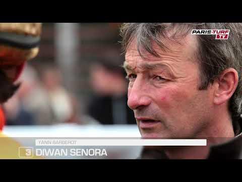 """Quinté samedi 16/02 : """"Diwan Senora (3) a fait ses preuves dans cette catégorie"""""""