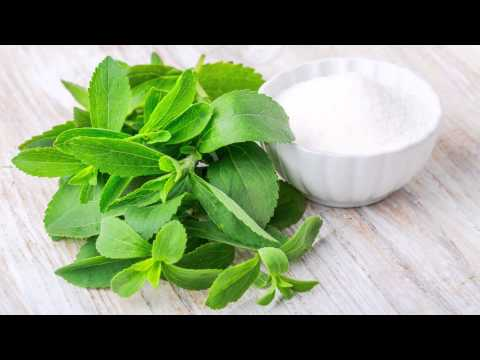 Stevia: Is it the Best Sugar Substitute?