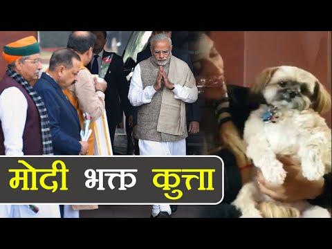 , title : 'Narendra Modi भक्त कुत्ते का Video देख भूल जाएंगे Rahul के Pidi को | वनइंडिया हिन्दी'