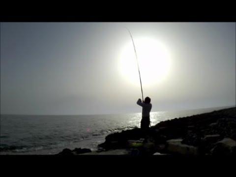 Lago privetny pesca di regione di Leningrado