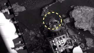 5 Alien Species Caught By Nasa On Mars! #2