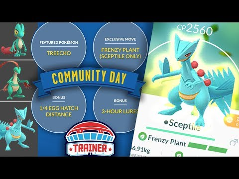 Pokémon GO, Community Day of Treecko: the details of the event today