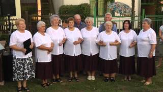 preview picture of video 'XXI. PINCEBÁL - SAJÓVÁMOS - 2014 július 26,'