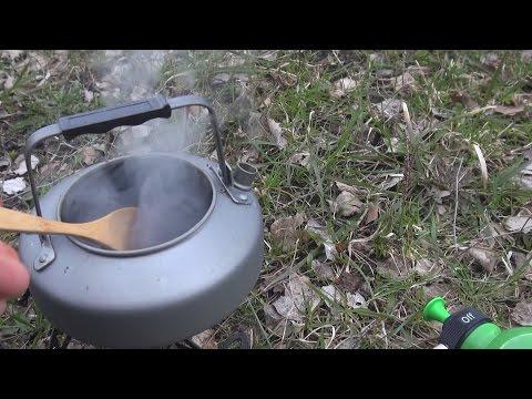 Как заваривать березовый гриб чага? Польза и вред чая из чаги.