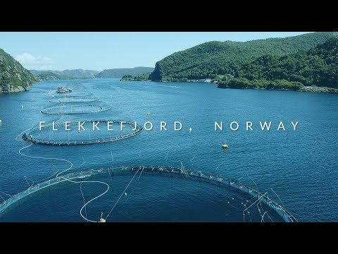 Marine Harvest, Norway - Aquaculture ROV