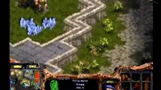 WCG 2006 한국대표선발전 스타크래프트 임요환 Vs 김준영 32강 2set