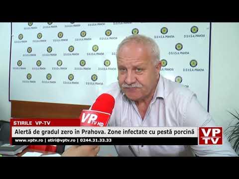 Alertă de gradul zero în Prahova. Zone infectate cu pestă porcină
