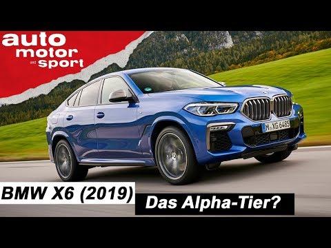 Der neue BMW X6 (2019): Das Alpha-Tier? - Review/Fahrbericht | auto motor und sport