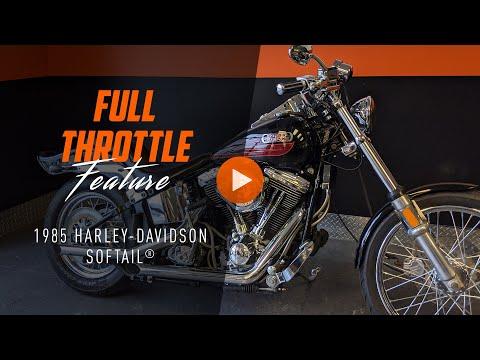 2015 Harley-Davidson 1200 Custom in Mentor, Ohio - Video 1