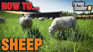 fs19 guide to sheep - मुफ्त ऑनलाइन वीडियो