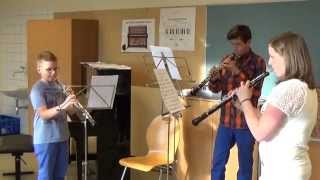 preview picture of video 'Klassenabend 2014 - Musikschule Ober-Grafendorf'