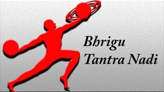 Bhrigu Tantra Nadi Astrology secrets revealed by a mysterious person (LIVE Readings)