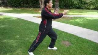 Yang Style Tai Chi Chuan 108 section 1